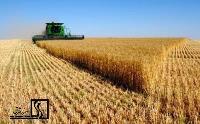 افزایش سرمایهگذاری در بخش کشاورزی