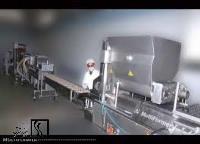 گزارشی از وضعیت سرمایهگذاری در یک کارخانه تولید ناگت