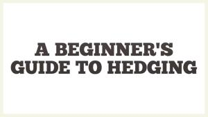 راهنمای هجینگ-پوشش ریسک- برای مبتدیان-A Beginner's Guide to Hedging-