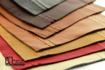Technical, Financial feasibility study of producing leather by high-tech