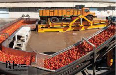Technical, Financial Feasibility Study and Planning Justification Report of Establishing production Unit of Tomato Paste Packing in Soleymanieh, Iraq