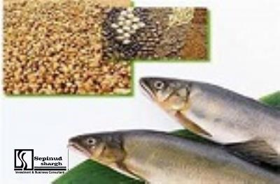 Technical, Financial Feasibility study of establishing aquatic ready meals production line