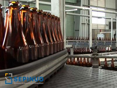 Pre-Feasibility Study for establishment of  Securite glass production plant