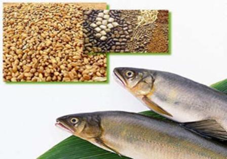 طرح توجیهی احداث واحد تولید خوراک آماده آبزیان