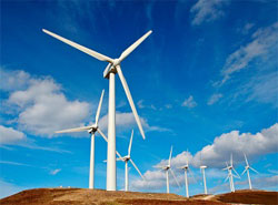Feasibility Study for the Establishment of 100 MW Wind Farm